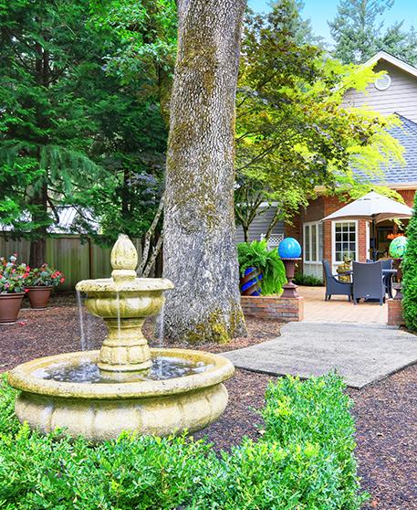Arbor Oaks Florida: Tree Hazard Evaluation, Deep Root Fertilization, Certified